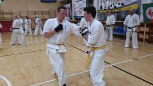 karate k